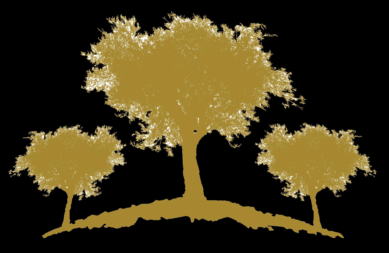 oliveirasgold